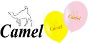 Camel様